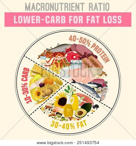 Low Carbohydrate Diet Diagram. Macronutrient Ratio Poster. Fat Loss Concept. Colourful Vector Illust