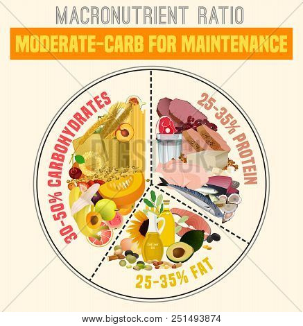 Moderate Carbohydrate Diet Diagram. Macronutrient Ratio Poster. Health Maintenance Concept. Colourfu