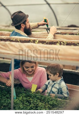 Family Business. Family Business In Agriculture Industry. Happy Family Has Business In Green House.