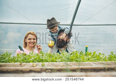 Health Care. Health Care Of Happy Family. Growing Organic Food For Health Care. Health Care Concept.