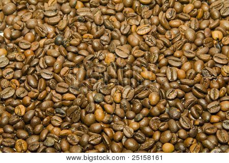 coffee beans textures