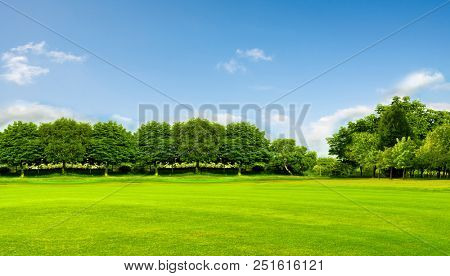 Green field, trees and blue sky.Great as a background,web banner