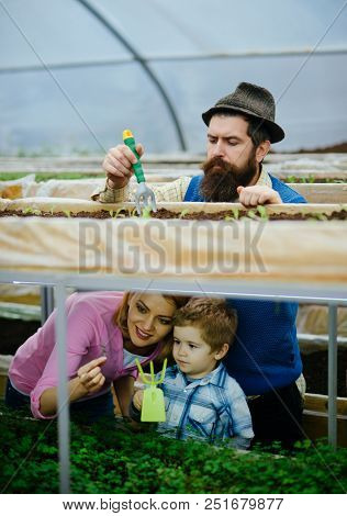 Retro Farm. Retro Farm With Happy Family. Gardener Family Work In Retro Farm. Retro Farm With Colorf
