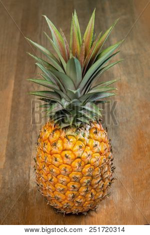 Single One Full Whole Organic Pineapple Fruit On Wooden Background, Standing Upright