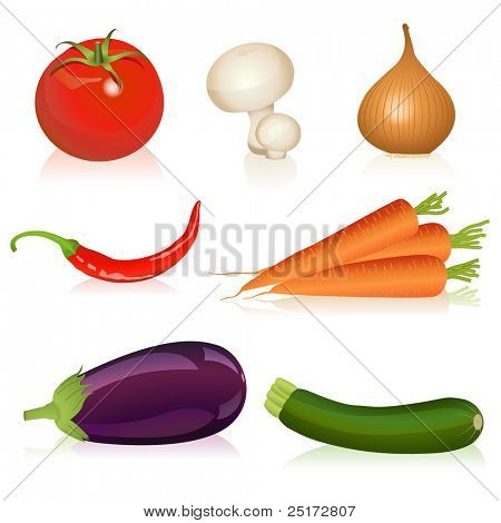 Illustration of tomato, mushroom, onion, carrot, chili, eggplant and zucchini