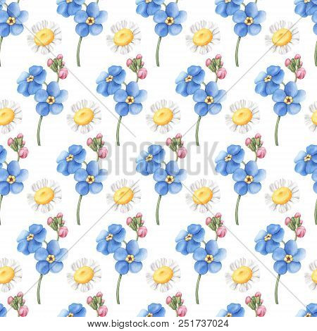 Seamless Pattern With Wild Summer Flowers - Forget-me-not And Daisies, Watercolour Raster Illustrati