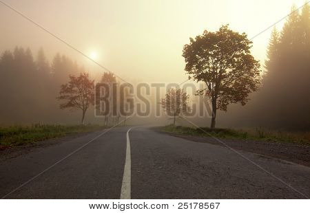 Misty sunrise on mountain autumn forest road