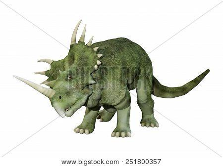 3D Rendering Dinosaur Styracosaurus  On White
