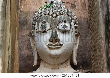 Big Buddha The Buddha image is large at Sukhothai Thailand is the art of Sukhothai poster
