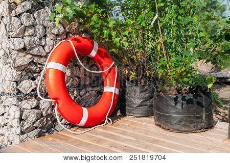 Lifebuoy On Pier Wit Bushes In Garden