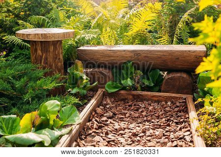 Beautiful Place For Rest Outdoor Relax Zone