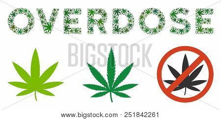 Overdose Caption Composition Of Cannabis Leaves In Various Sizes And Green Shades. Vector Flat Grass