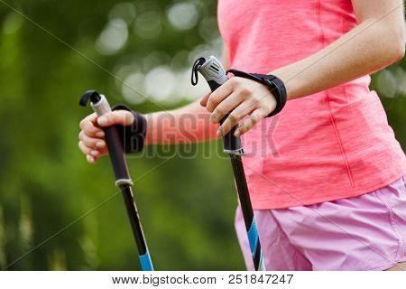 Walking sticks for nordic walking in the nature
