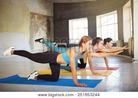 Yoga Class, Pilates, Fitness, Flexibility, Activity And Healthy Lifestyle. Fit Sporty Women Working