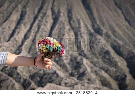 Woman Hand Holding Dried Flowers Bouquet For Praying On Volcanic Mountain Bromo, East Java, Indonesi
