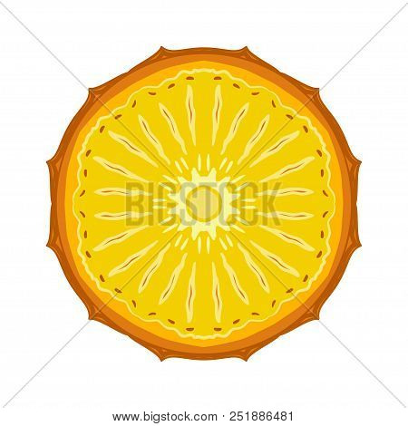 Sliced Colored Sketch Style Fruit Pineapple Isolated On White Background. Half Of Fruit. Bio Food Ve
