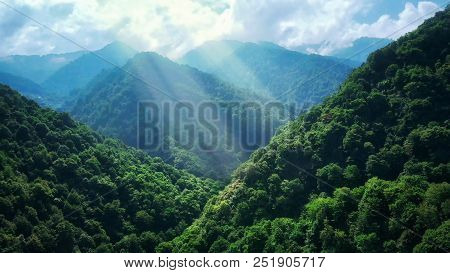 Mountain Forest In Fog And Clouds. Aerial View Of Over Green Hills With White Fog, Clouds. Guria Reg