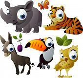 2010 animal set: rhino, tiger, toucan, owl, donkey poster
