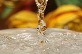 Water Drops close-up crisp beautiful stock photo poster