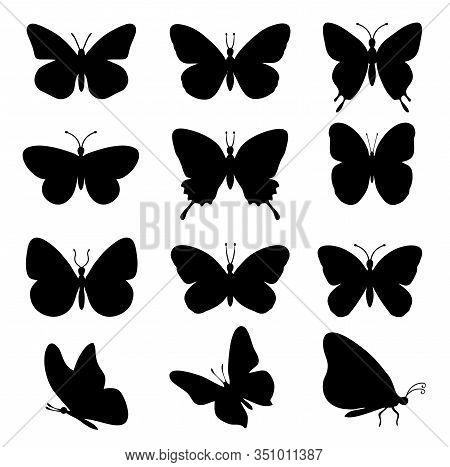 Butterflies Silhouettes. Spring Butterfly Silhouette Collection Isolated On White Background. Vector
