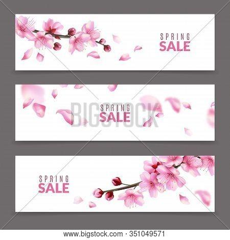 Sakura Banners. Spring Japanese Cherry Flower Blossom And Branches, Falling Pink Sakura Petals, Spri