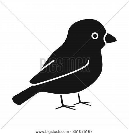 Vector Design Of Bullfinch And Bird Icon. Set Of Bullfinch And Robin Vector Icon For Stock.