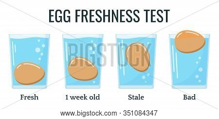 Eggs Floating In Transparent Glass Of Water Isolated On White Background. Egg Freshness Test. Four D
