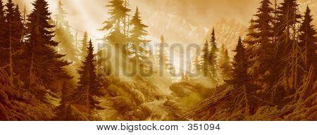 Stream In The Cascade Mountains