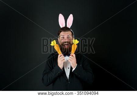 Carrots For Easter. Happy Boss Celebrate Easter. Bearded Bunny Hold Carrots. Enjoying Celebration. H
