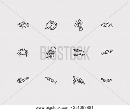 Aquatic Icons Set. Salmon And Aquatic Icons With Jellyfish, Lobster And Sardine. Set Of Crayfish For