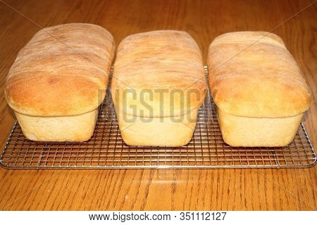 Three Loaves Of Fresh Home Made White Baked  Bread.