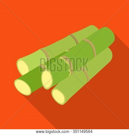 Isolated Object Of Stem And Sugar Symbol. Web Element Of Stem And Cane Vector Icon For Stock.
