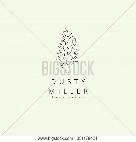 Dusty Miller Plant Logo And Branch. Hand Drawn Wedding Herb, Plant And Monogram With Elegant Leaves