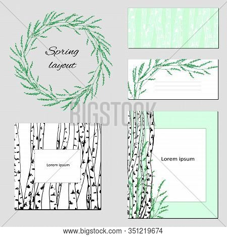 Templates For Text, Corporate Identity With A Delicate Contour Pattern. Birch Trees With Green Leave