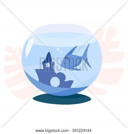 Aquarium. Betta Fish In Fishbowl. Adorable Small Pet Fish.