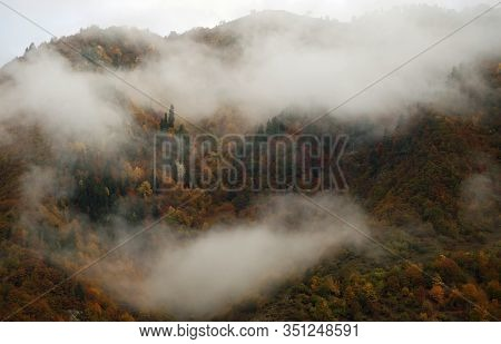 Incredible Misty View Of Mountain With Colorful Forest With Autumn Leaves Covered Partly With Foggy