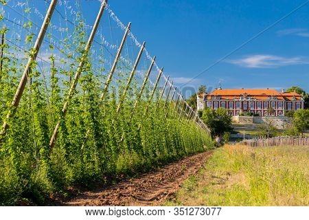 Rococo castle Steknik with hop field, Czech Republic