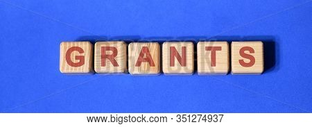 Grants Text On Wooden Cubes. Business Concept