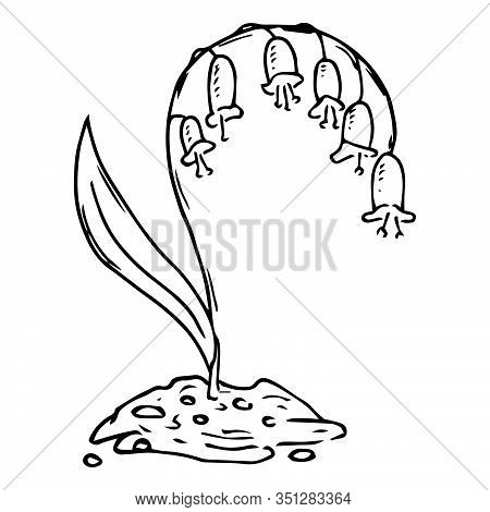 Lilies Of The Valley Icon. Vector Illustration Of Spring Lilies Of The Valley. Hand Drawn Flowers Li