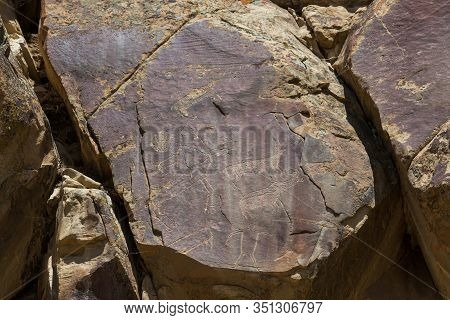 Ancient Petroglyphs Of Deer, Bighorn Sheep And A Man Like Figure Are Carved Into Sandstone Rocks At