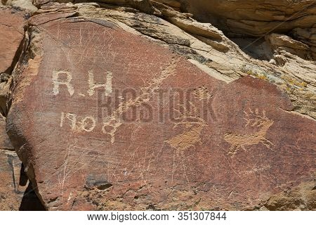 Modern Graffiti That Is Over A Hundred Years Old On A Sandstone Rock With Animal Petroglyph Carvings