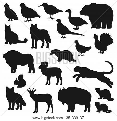 Animal And Bird Black Silhouettes Of Hunting Sport Design. Vector Bear, Wolf And Duck, African Buffa