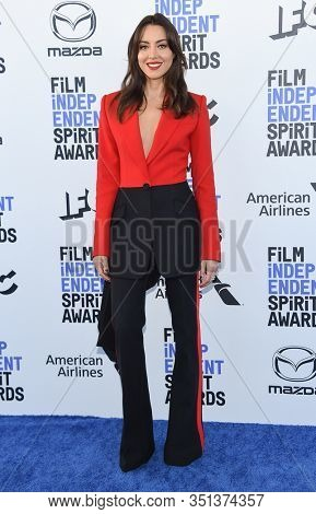 LOS ANGELES - JAN 06:  Aubrey Plaza arrives for the Film Independent Spirit Awards 2020 on February 08, 2020 in Santa Monica, CA