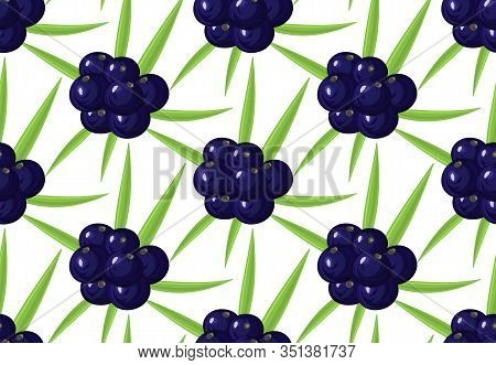 Seamless Pattern With Ripe Acai Berries, Leaves. Brazilian Superfruit. Euterpe Oleracea. Superfood F