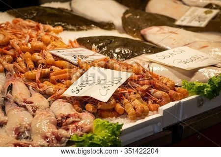 Fresh Scampi And Other Fish Lying On A Table, Market In Venice (italy)