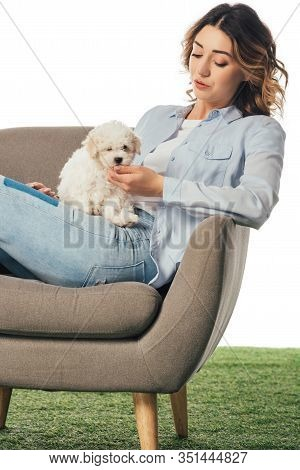 Woman Stroking Havanese Puppy And Sitting On Armchair Isolated On White
