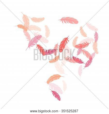 Minimalist Pink Flamingo Feathers Vector Background. Quill Plumelet Silhouettes Illustration. Plumag