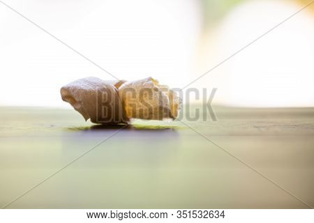 Dog Bone, Ate Dog Treats, Rawhide Dog Chews Bitten On Wooden Table Texture In Bokeh Green Garden, Cl