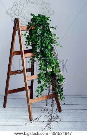A Decorative Wooden Staircase With A Chain Decorated With Green Liana Flowers And Birch Branches Sta