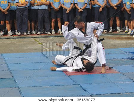 Participants of Taekwondo tournament